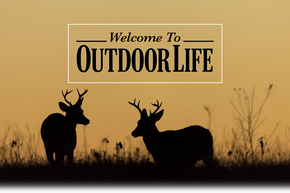 Welcome to Outdoor Life